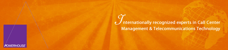 Professional Management and Consulting Firm